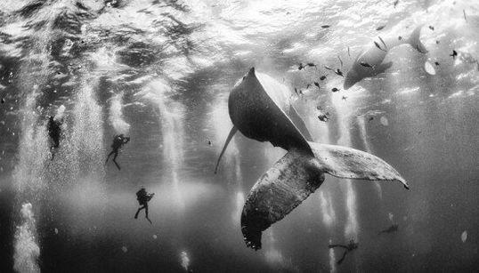 Le 10 foto che hanno vinto il National Geographic Traveler Photo Contest