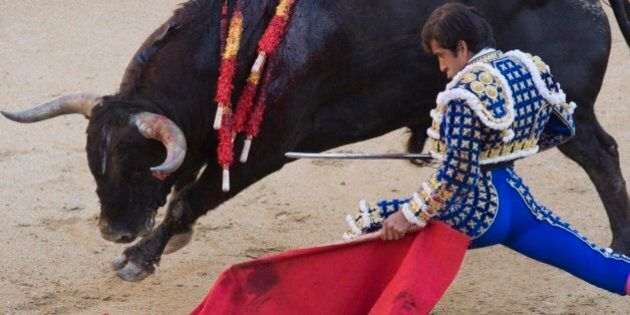 Mexican-born bullfighter Joselito Adame baits a bull during a corrida at Madrid's Las Ventas arena, Friday,...