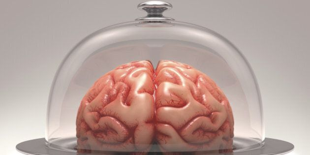 Brain over a stainless steel platter covered by a glass cover. Clipping path