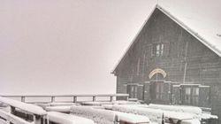 In Trentino si sono svegliati così: neve in pieno