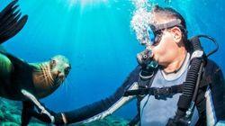 I 6 posti più belli del mondo in cui immergersi