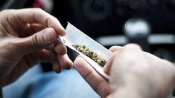Le overdosi da cannabis restano costanti...
