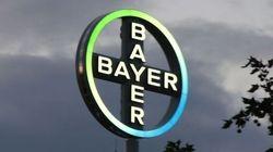 Bayer punta su sementi modificati e fertilizzanti: offre 62miliardi di dollari per la