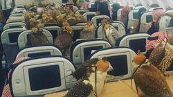 Sceicco saudita compra 80 biglietti d'aereo per viaggiare con i suoi