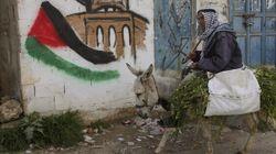 L'eterna emergenza dei profughi palestinesi in