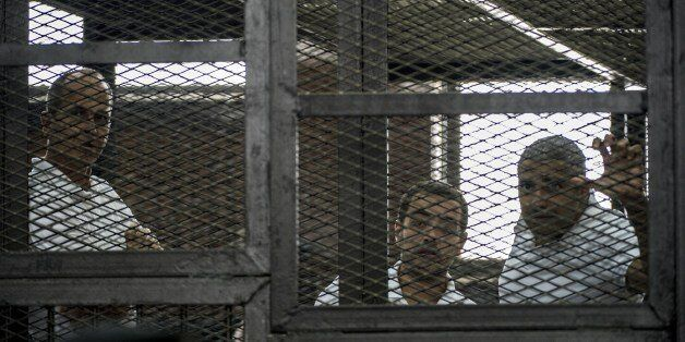 Al-Jazeera news channel's Australian journalist Peter Greste (L) and his colleagues, Egyptian-Canadian Mohamed Fadel Fahmy (R