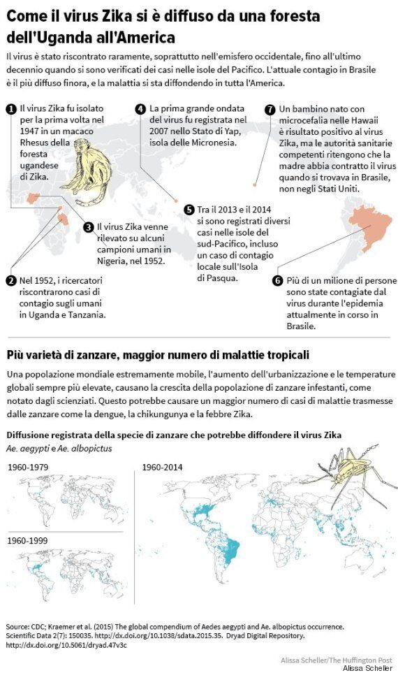 Una guida illustrata alla diffusione del virus