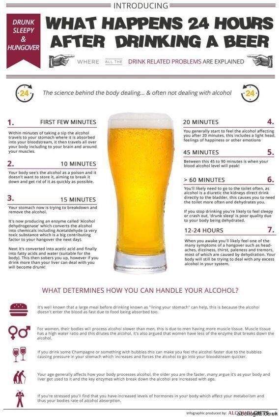 Birra, gli effetti sul corpo un'ora dopo l'assunzione. Un'infografica spiega perché ci sentiamo ubriachi