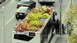 Con i giardini sul tetto anche gli autobus urbani aiutano a migliorare la qualità