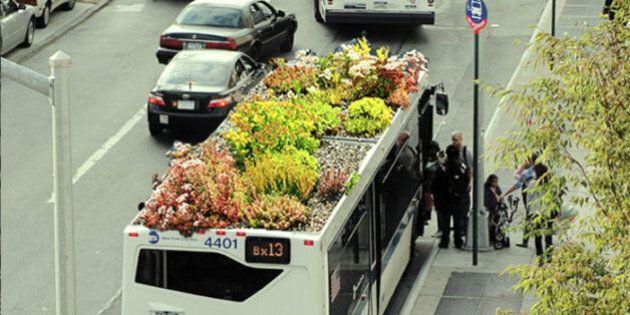 Con i giardini sul tetto anche gli autobus urbani aiutano a mogliorare la qualità dell'aria: succede...