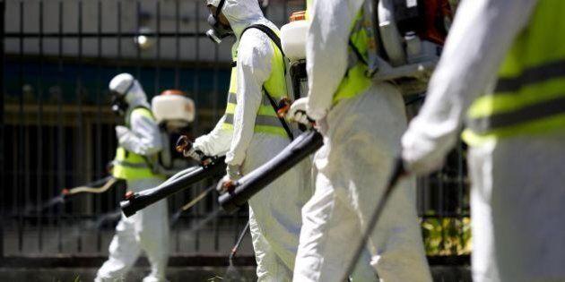 Oms: il virus Zika è un'emergenza sanitaria