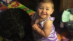 Viviana, 8 mesi, è viva grazie al sacrificio del cane-eroe