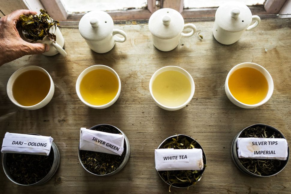 A variety of premium teas are laid out for tasting at the Makaibari Tea Estate in Kurseong, West Bengal, India, on Monday, Se