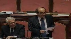 Scilipoti chiede in Senato che una madre surrogata venga trattata come un