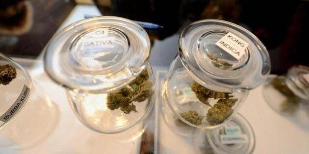 Marijuana, il
