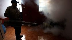 Una donna incinta in Spagna è affetta dal virus Zika: primo caso in