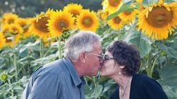 Muore sua moglie e lui pianta girasoli per sette