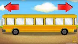Da che parte va questo bus? Il rompicapo cui hanno risposto meglio i bambini degli