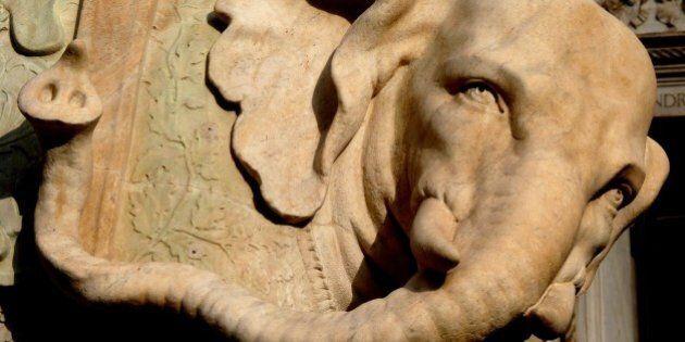 Vandali sfregiano l'Elefante del Bernini in piazza della Minerva a Roma: rotta una