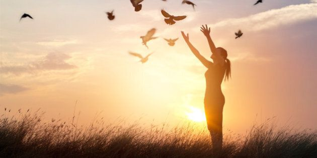 Woman praying and free bird enjoying nature on sunset background, hope