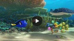 Findind Dory: ecco il primo trailer del sequel di
