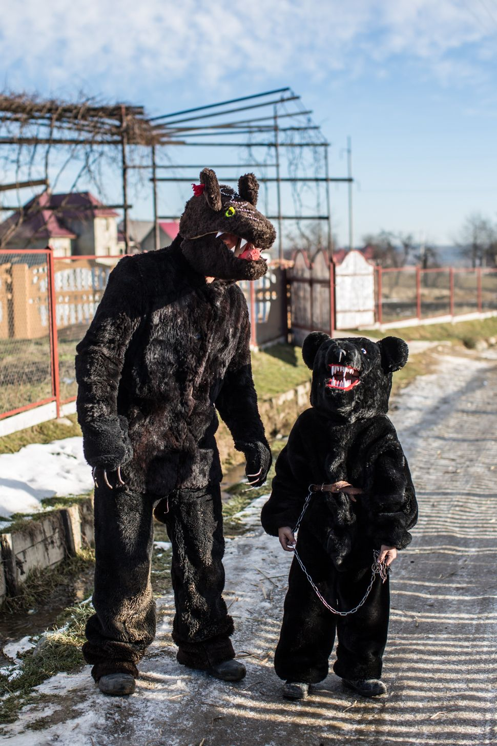 Villagers dress up in bear costumes as they celebrate the winter festival of Malanka on January 14, 2015 in Krasnoilsk, Ukrai