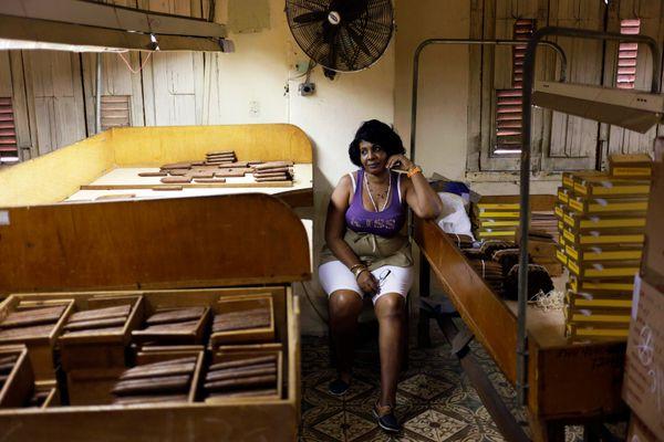 A Cuban woman works in the H. Upmann cigar factory on Feb. 26, 2015 in Havana, Cuba.  (Sven Creutzmann/Mambo Photo/Getty Imag