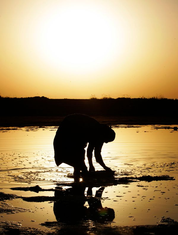 An Iraqi woman works to collect salt from a water course near Latifiyah, about 20 miles south of Baghdad, Iraq. Wednesday, Ma