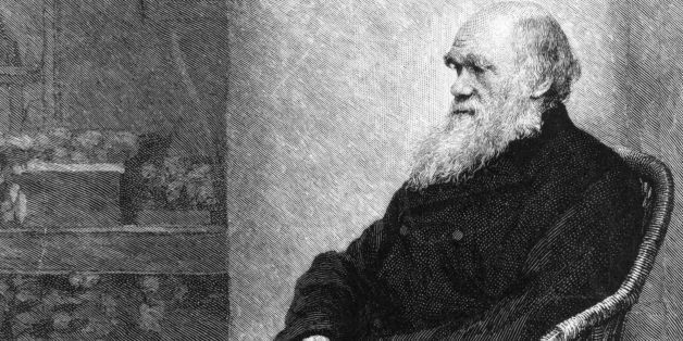 circa 1880:  English naturalist Charles Darwin (1809 - 1882) sitting in a wicker chair.  (Photo by Hulton Archive/Getty Image