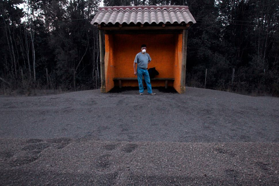 A man waits at a bus stop waiting to be evacuated on a street in the town of Ensenada, awash with ash from the eruption of th