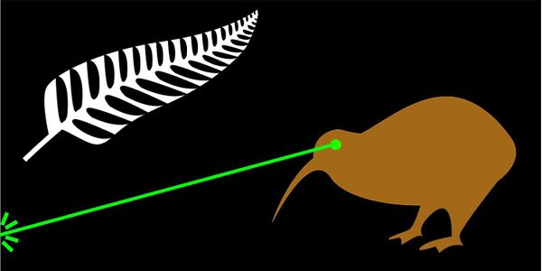 The laser beam projects a powerful image of New Zealand. I believe my design is so powerful it does not need to be discussed.