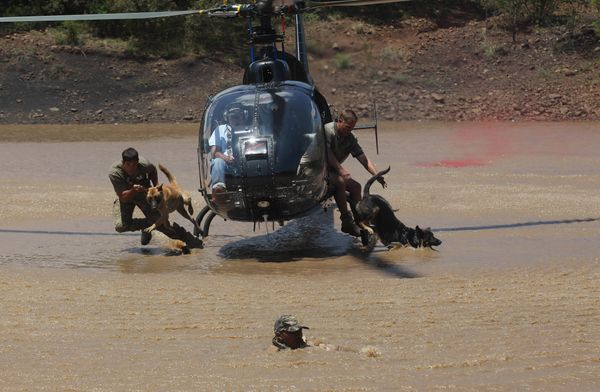 """In this photo taken Wednesday, Nov. 26, 2014 dogs exit a helicopter with their handlers to chase a """"rhino poacher"""" front in w"""