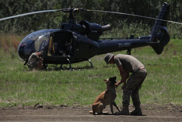 In this photo taken Wednesday, Nov. 26, 2014 a dog and its handler are photographed during training at an academy run by the