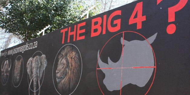 A mural painted on a suburban wall in Johannesburg, South Africa calls for the halt to rhino poaching, Monday, July 21, 2014.