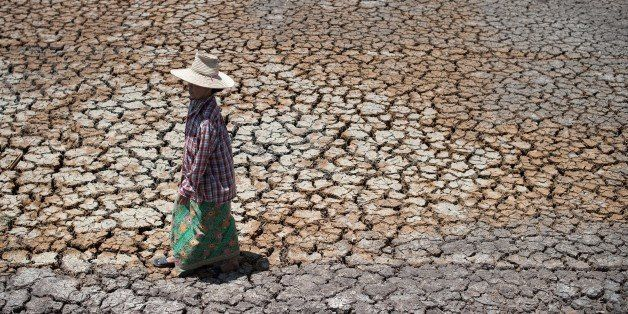 TO GO WITH Thailand-economy-rice-drought,FOCUS by Jerome Taylor This picture taken on July 2, 2015 shows a Thai farmer walki