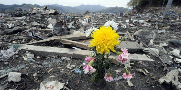 A flowers sits among the rubble in the tsunami-devastated town of Otsuchi, Iwate prefecture on May 10, 2011.   Japan's Prime