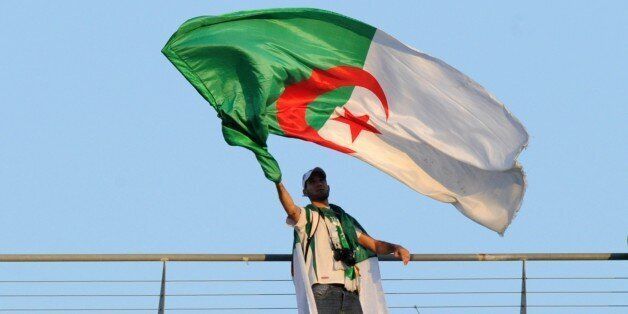 An Algeria football team fan waves an Algerian flag during the match between Togo and Algeria at the 2013 African Cup of Nati