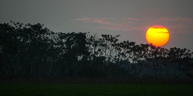 Picture taken during sunset in Carauari, a town on the banks of the Jurua river in the Brazilian state of Amazonas, some 540