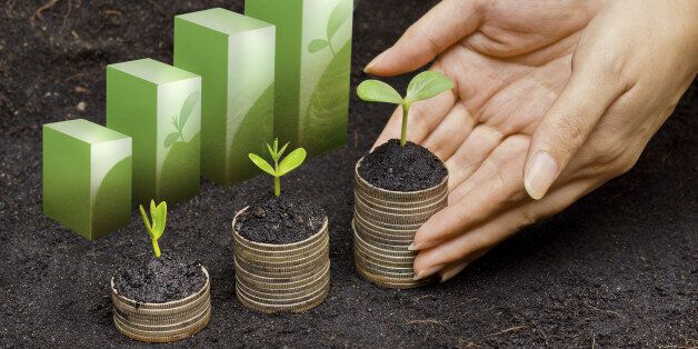 hands holding tress growing on coins in germination sequence / csr / sustainable development / business growth with responsib