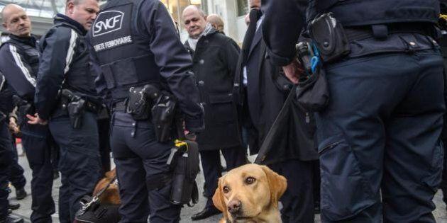 Francia, sventato attacco terroristico imminente. Fermate quattro