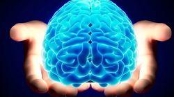 Riacquista la parola grazie a uno switch del cervello. Ricercatori italiani: