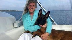 Il cane nuota per 10 chilometri per riunirsi alla famiglia dopo essere caduto dalla