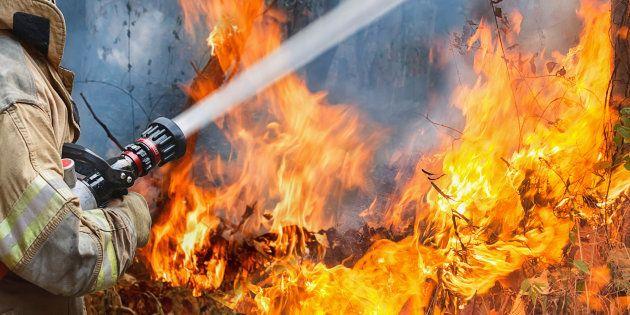 L'Italia tra le fiamme ha bruciato anche la sua
