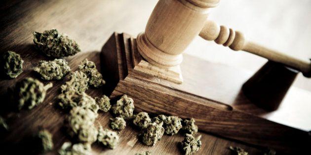 Gavel and marijuana. Concept about drug vs