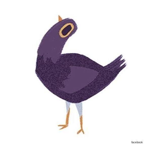 Perché questo uccello viola è ovunque su facebook e cosa