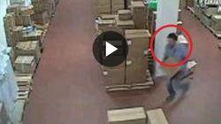 Andavano in ospedale solo per rubare farmaci e pannolini: arrestati dipendenti