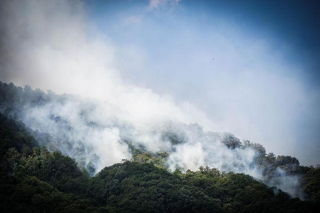 Un nuovo incendio sul versante del Monte Somma nel Parco Nazionale del Vesuvio, Napoli, 17 luglio 2017....