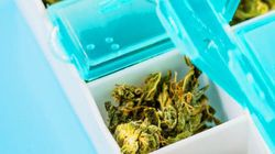 Quando la paura della legalizzazione delle droghe fa