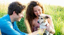 Separazioni e animali: quando il cane diventa oggetto di