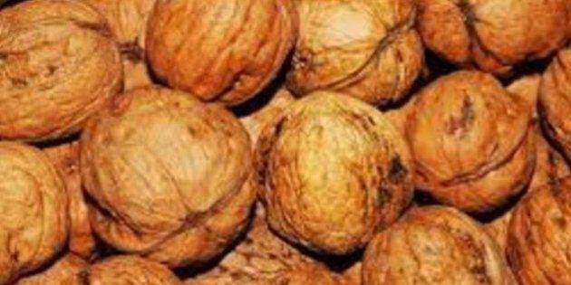 Per migliorare l'umore una manciata di noci al giorno: la ricerca della Università del New